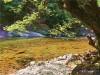 嶂山峡谷清溪