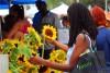 太阳花与美女